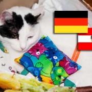 Versand nach Deutschland und Österreich