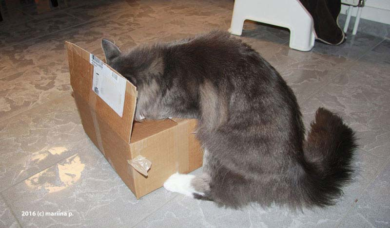 Und nun ist das Paket endlich offen